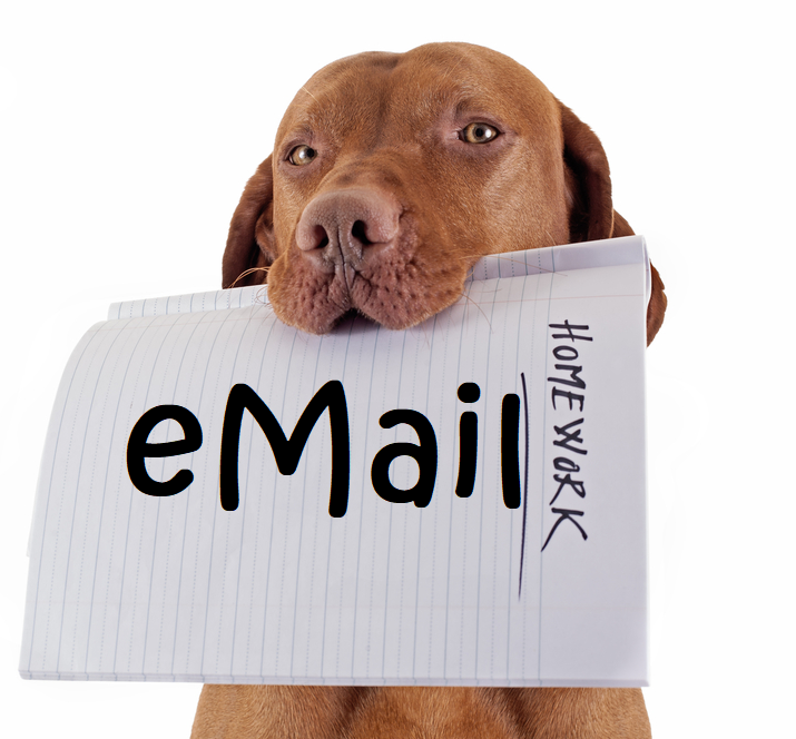 The dog ate your email.